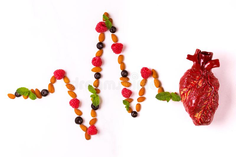 Alimento, modello del cuore e cardiogramma sani della mandorla Abstrac medico fotografie stock