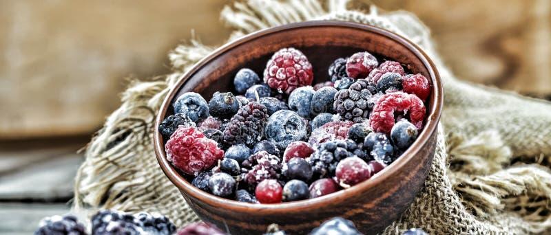 Alimento natural congelado das bagas imagens de stock royalty free