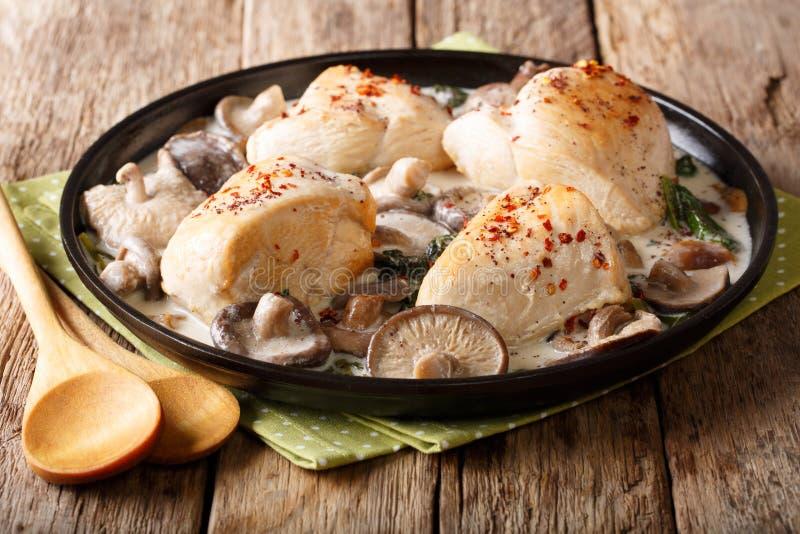 Alimento natural: faixas cozidos da galinha com cogumelos e o spi selvagens foto de stock