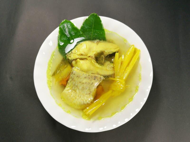 Alimento natural para a aptid?o Peixes fervidos ervais Peixes da cúrcuma foto de stock royalty free