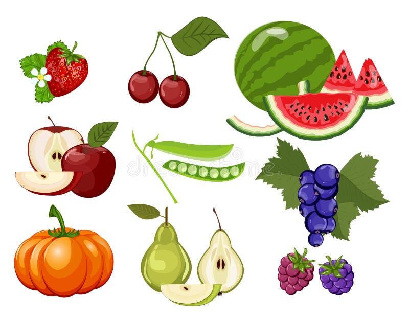 Alimento natural saudável da dieta orgânica, abóbora, cereja, amora-preta, maçã, pera, framboesa, morango, melancia, corinto ilustração do vetor