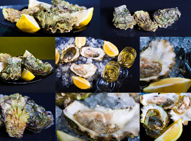 Alimento ostras e champanhe, grupo! foto de stock