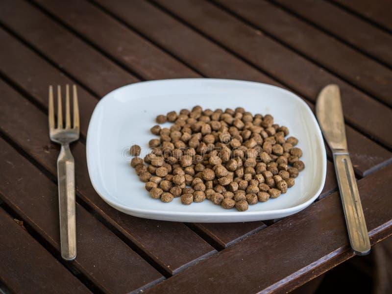 Alimento para cães na placa foto de stock