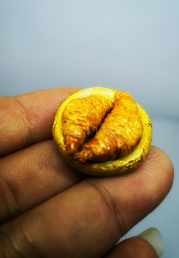 Alimento para a dieta uma miniatura do croissant do alimento da argila Copie o espaço ideia para a dieta imagens de stock