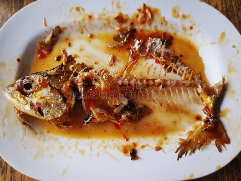 Alimento restante da cavala doce e picante que mostra os Fishbones imagens de stock