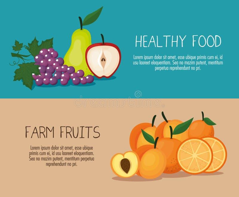 Alimento sano di frutti deliziosi royalty illustrazione gratis