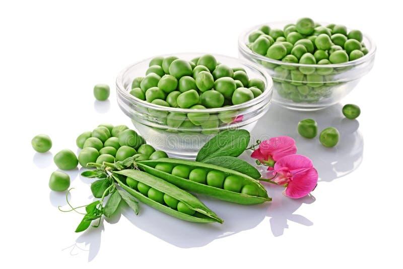 Alimento sano Guisantes verdes frescos en bol de vidrio con las flores rosadas del guisante de olor fotografía de archivo libre de regalías