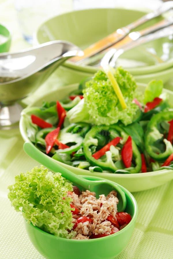 Alimento sano, insalata con i tonni immagine stock libera da diritti
