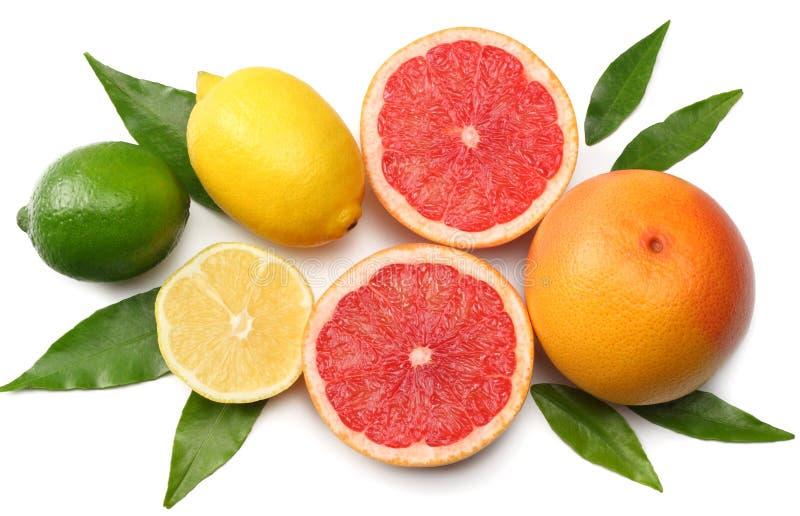 Alimento sano mezcle el limón, la cal verde, la naranja y el pomelo con la hoja verde aislada en el fondo blanco Visión superior  foto de archivo libre de regalías