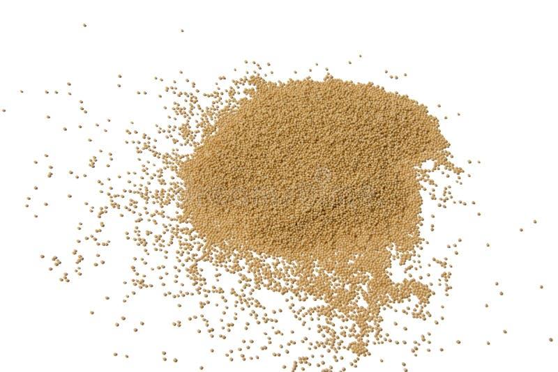 Alimento saudável do montão do amaranto isolado no fundo branco fotos de stock royalty free