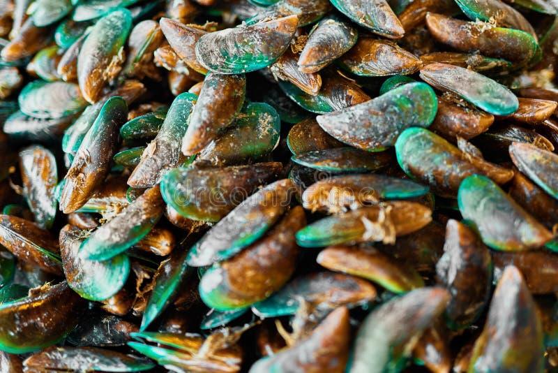 Alimento saudável Fundo do marisco Mexilhões verdes asiáticos nutrition imagem de stock royalty free