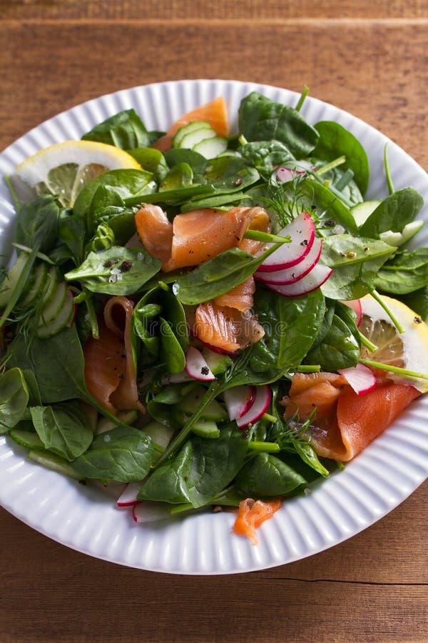 Alimento saudável: salada salmon do pepino do rabanete dos espinafres imagens de stock royalty free