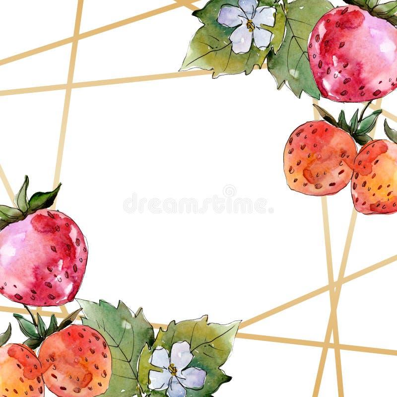 Alimento saud?vel da morango Grupo da ilustra??o do fundo da aquarela Quadrado de cristal do ornamento da beira do quadro ilustração do vetor