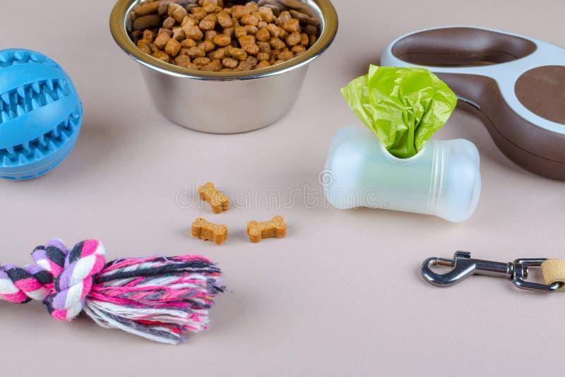 Alimento secado em uma bacia para animais de estimação, trela, brinquedos e sacos do tombadilho imagens de stock