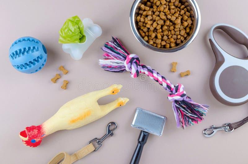 Alimento secado para animais de estimação, trela e brinquedos com pente imagens de stock