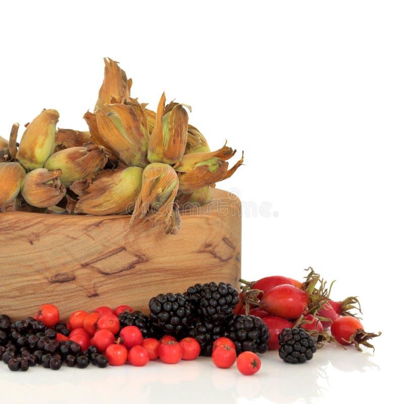 Alimento selvagem do outono fotografia de stock royalty free