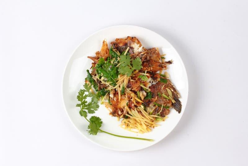 Alimento tailandês, gengibre fritado com peixes do Tilapia (Pla Nil Pad Khi da chamada fotos de stock