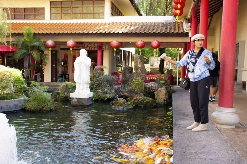 Alimento tailand?s da visita e da alimenta??o da mulher para gostar da carpa na lagoa do jardim chin?s no centro cultural Tailand fotos de stock