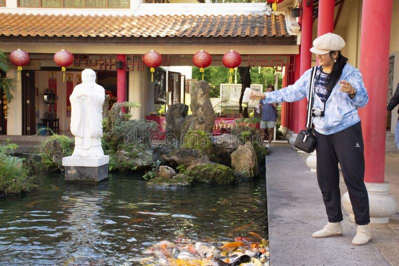 Alimento tailand?s da visita e da alimenta??o da mulher para gostar da carpa na lagoa do jardim chin?s no centro cultural Tailand imagens de stock royalty free