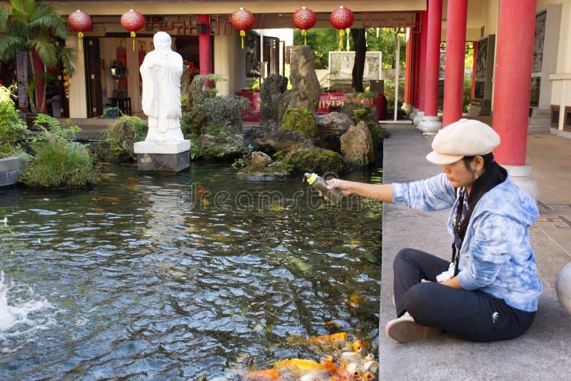 Alimento tailand?s da visita e da alimenta??o da mulher para gostar da carpa na lagoa do jardim chin?s no centro cultural Tailand fotografia de stock