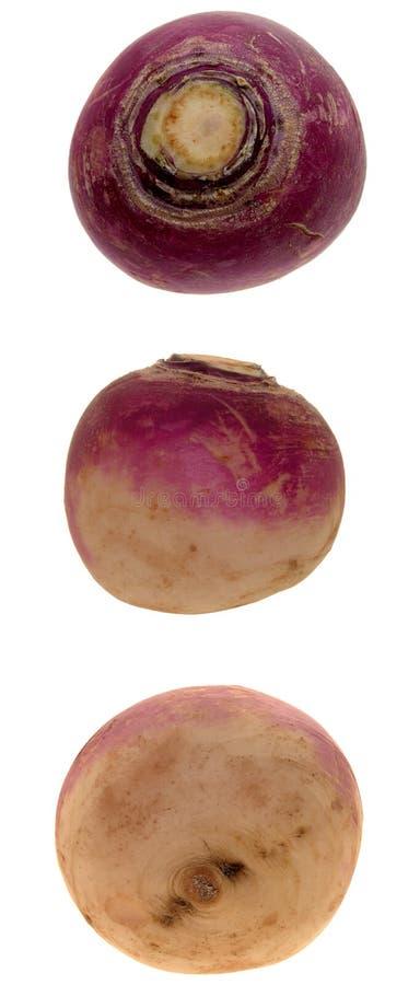 Alimento: Trio Della Rapa Fotografia Stock
