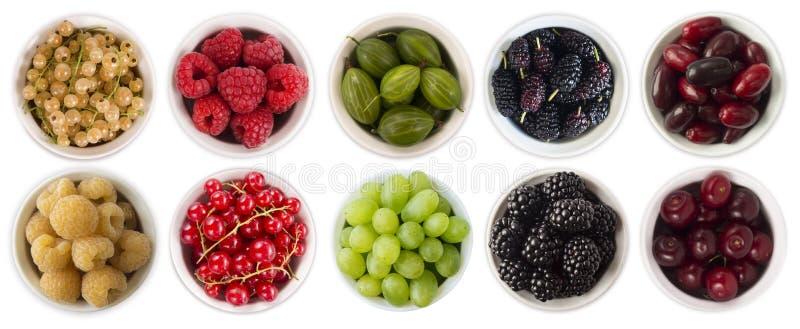 Alimento vermelho, preto, amarelo e verde Frutos e bagas na bacia isolada no branco Baga doce e suculenta com espaço da cópia par fotografia de stock
