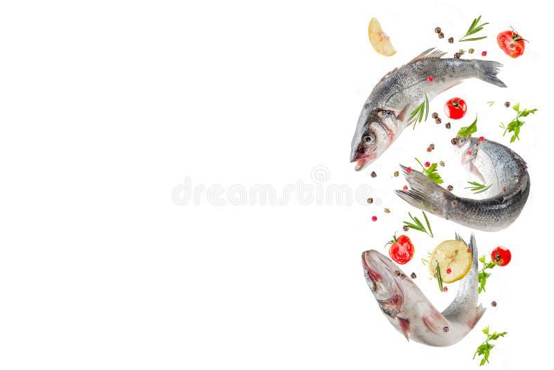 Alimento volante, pesce crudo del branzino con le spezie fotografia stock libera da diritti