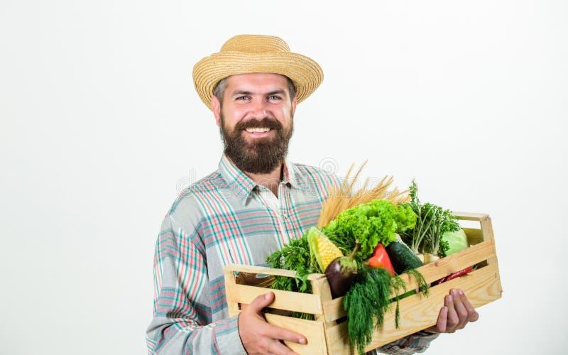 Alimentos locais da compra Da posse farpada r?stica do homem do fazendeiro caixa de madeira com fundo branco dos vegetais caseiro foto de stock royalty free