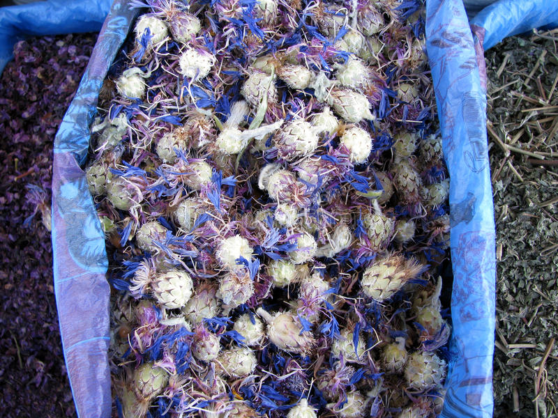 Alimentos orientais do bazar - ervas fotos de stock