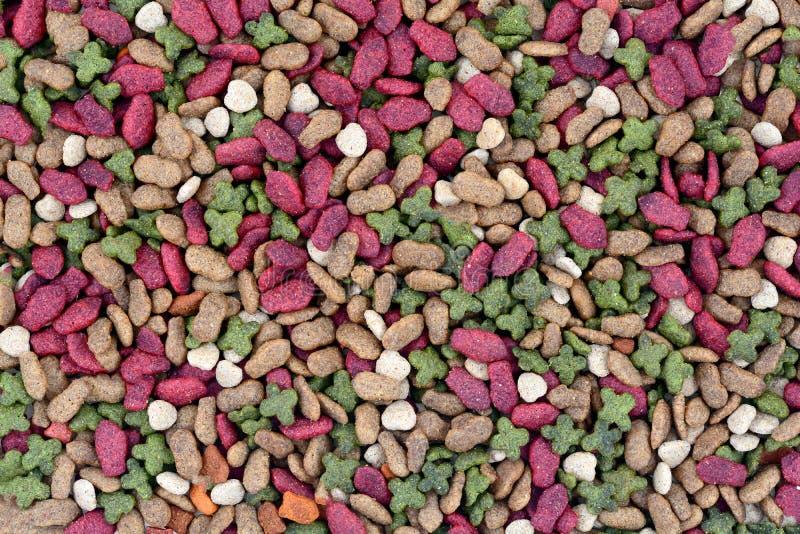 Aliments pour chats secs photo stock