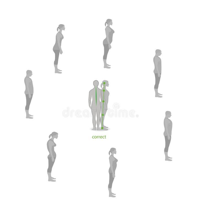 Alineación del cuerpo humano en la postura derecha para la buena personalidad y sano correctos de espina dorsal y del hueso Atenc stock de ilustración