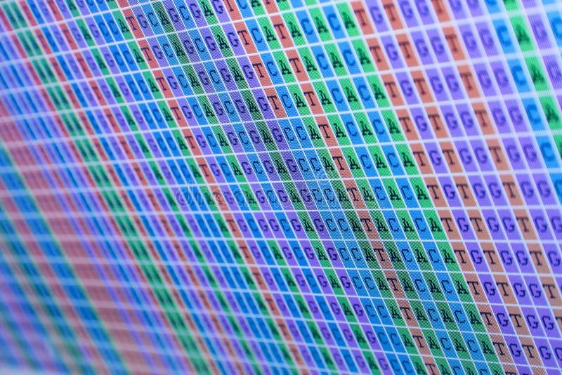 Alinhamento de bases do ADN imagem de stock