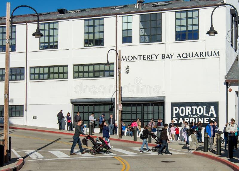 Alinhe para entrar no aquário da baía de Monterey imagem de stock