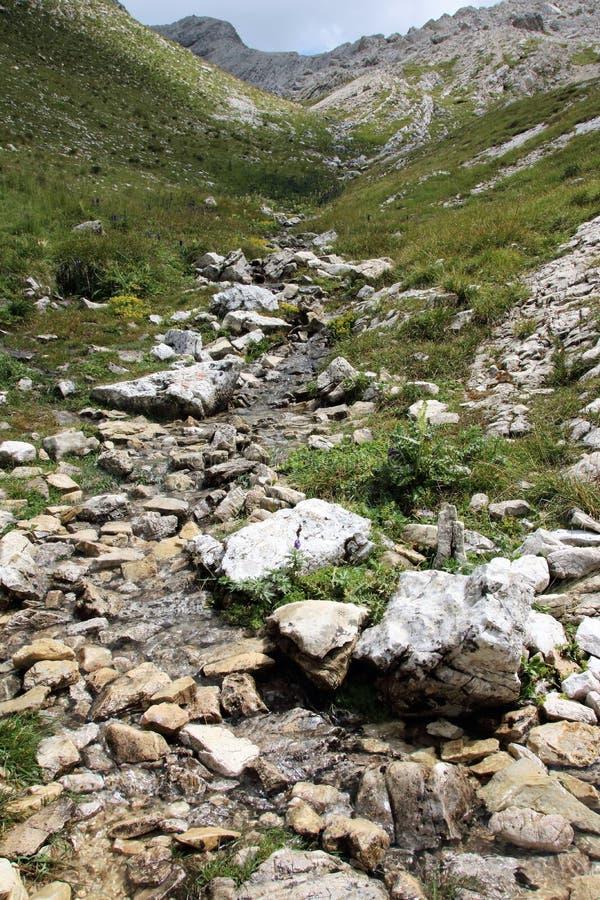 Alpine stream bed royalty free stock photos