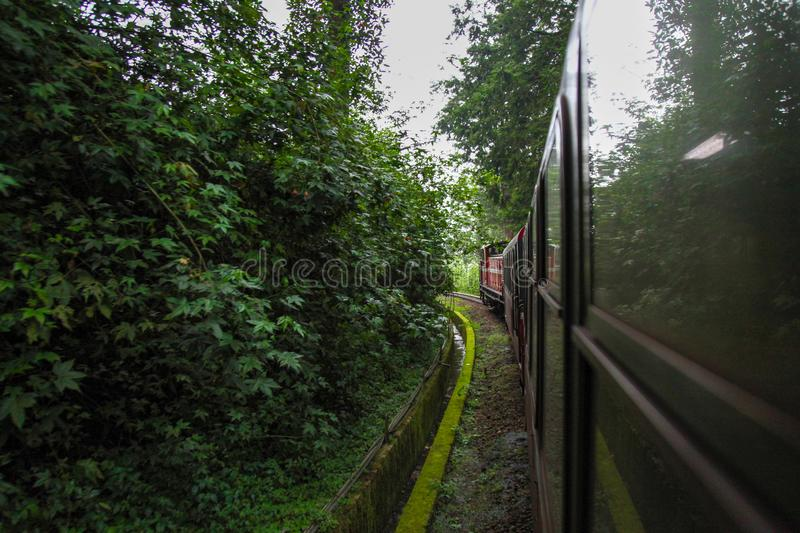 Alishan,taiwan-October 14,2018:Red train run in foggy day at alishan line on alishan mountain,taiwan. View, metal, park, tourism, forest, outside, blossom royalty free stock photos