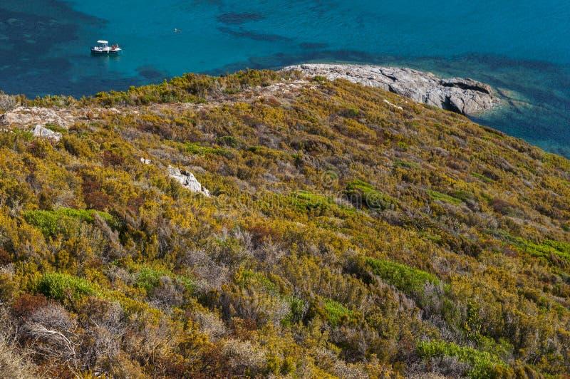 ` Alisu do Plage d, praia, Corse Haute, cabo Corse, Córsega, Córsega superior, França, Europa, ilha fotografia de stock