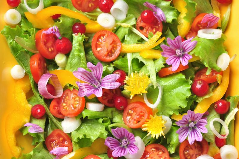 Alkalische, kleurrijke salade met bloemen, fruit en groenten royalty-vrije stock foto's