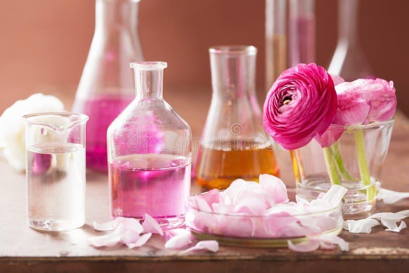 Alkemi och aromatherapyuppsättning med ranunculusblommor och flaskor royaltyfri bild