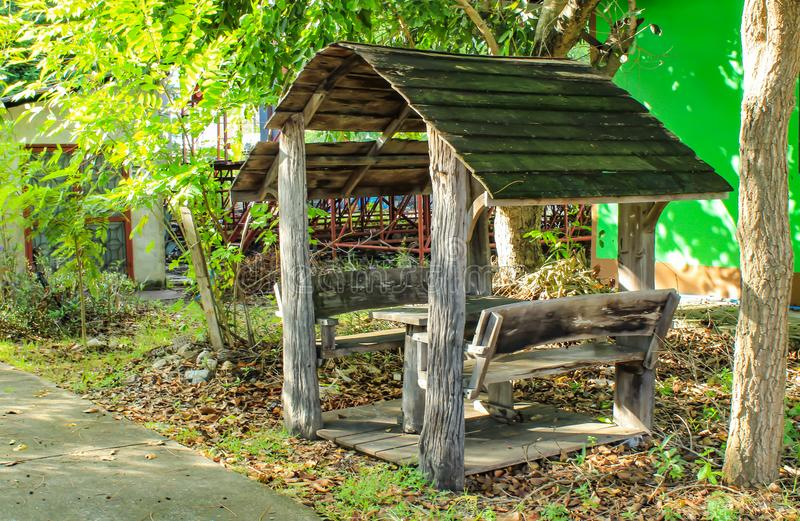 Alkierz siedzieć w parku zdjęcie royalty free