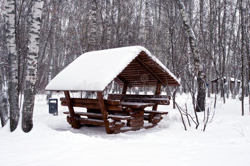 Alkierz w śniegu zdjęcie royalty free