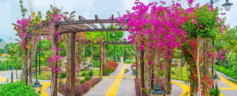 Alkierz w kwiatach fotografia royalty free