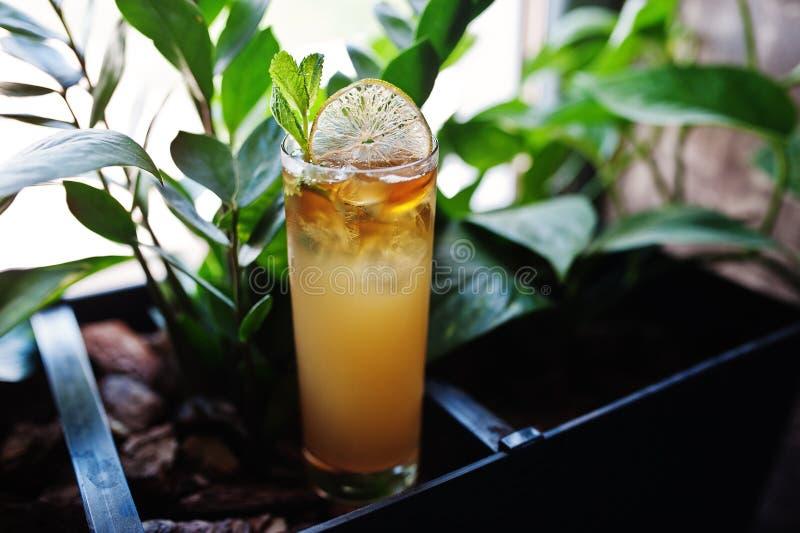 Alkoholiczka długi żółty koktajl w szkle przy baru stołem obrazy royalty free