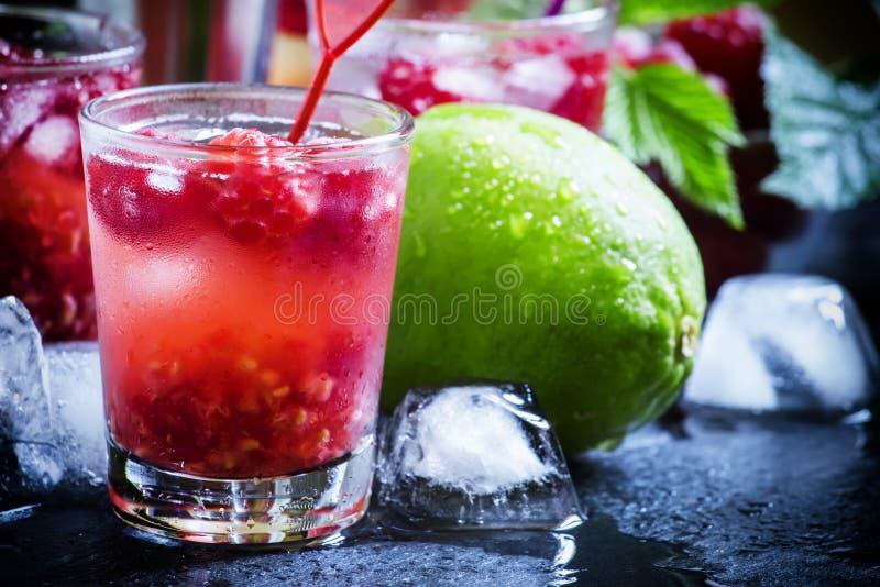 Alkoholicznego koktajlu malinowe ambicje z ajerówką, cranberry ju obraz royalty free