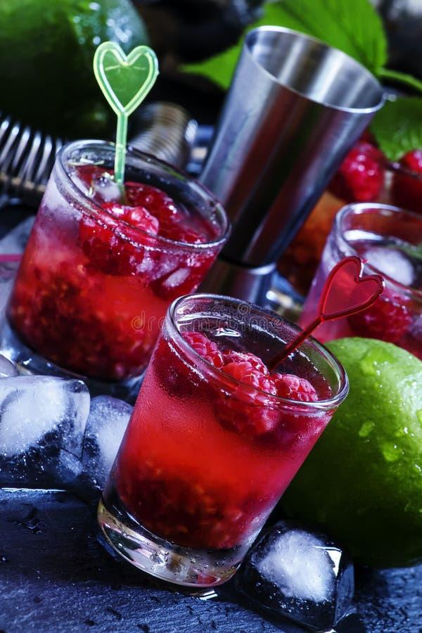 Alkoholicznego koktajlu malinowe ambicje z ajerówką, cranberry ju obrazy stock