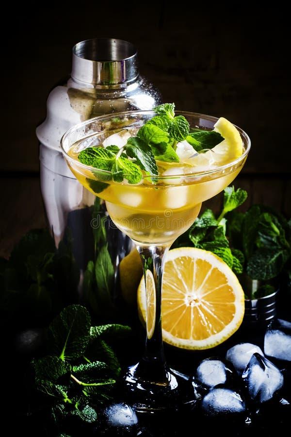 Alkoholischer Cocktail Daiquiri mit Zitrone und Minze, dunkler Hintergrund stockfotos