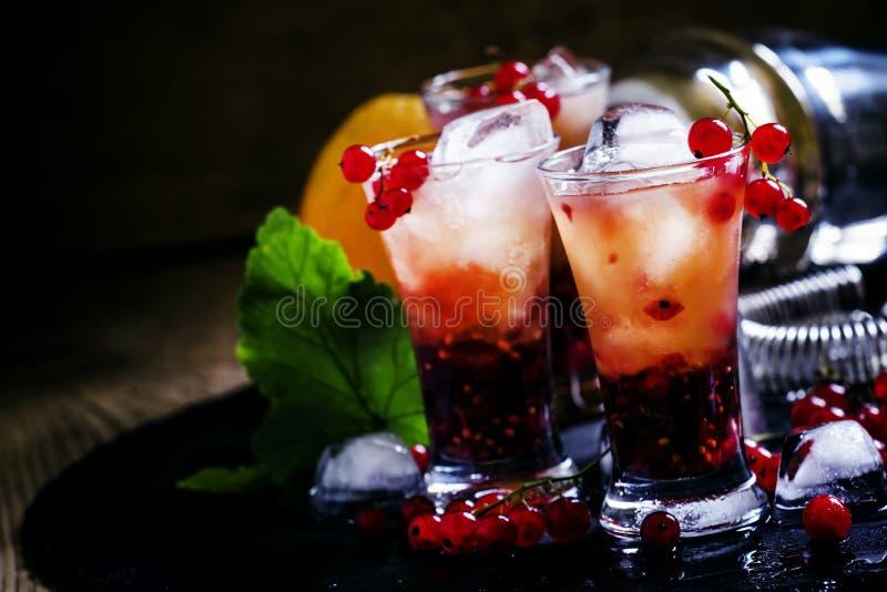 Alkoholischer Cocktailsommer sprudeln mit Orange und roter Johannisbeere, selec stockbild