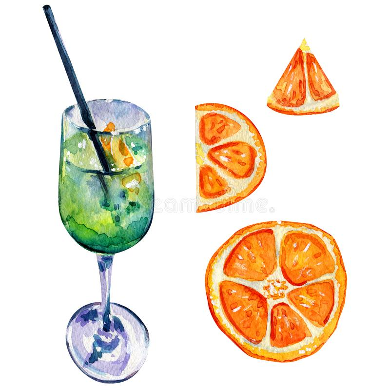 Alkoholiserad coctail och orange skivor royaltyfri illustrationer
