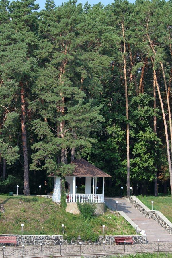 Alkov i skogen royaltyfria bilder