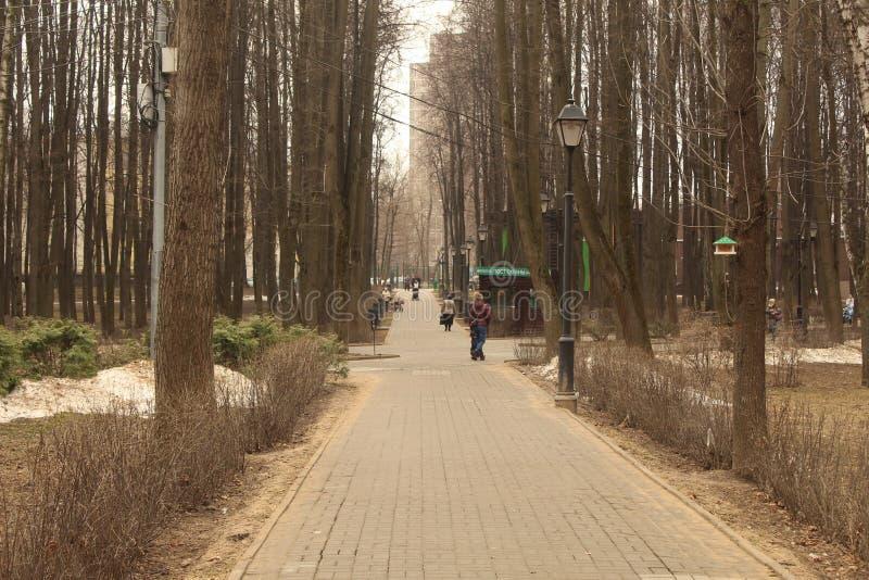 Allée centrale de parc de Moscou Babushkinsky images libres de droits