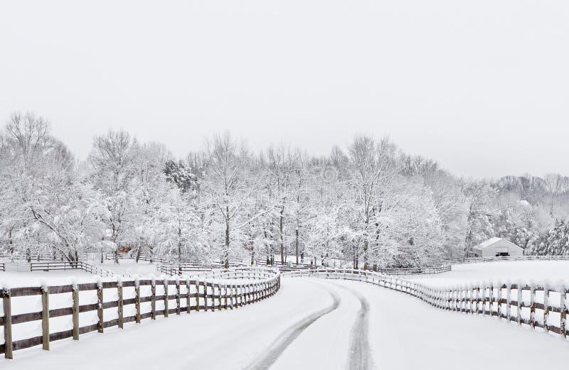 allée de campagne neigeuse photos libres de droits
